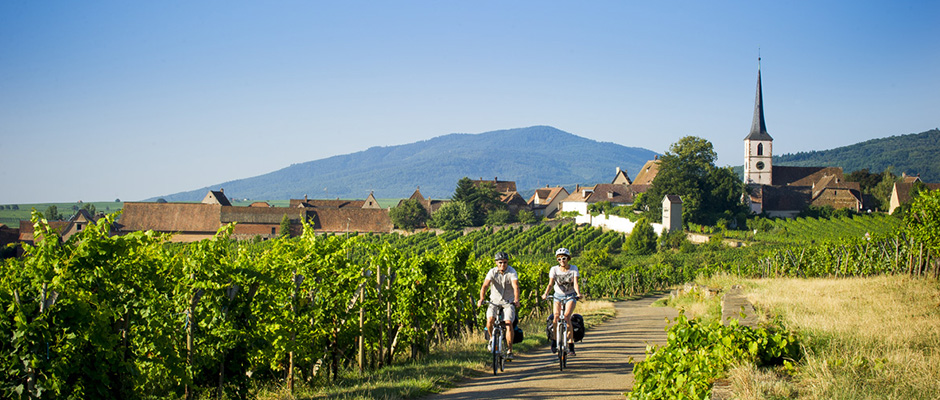 Alsace Wine Road cycle route